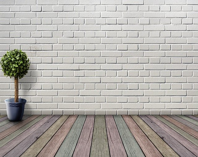 wooden floor and a white wall with plant